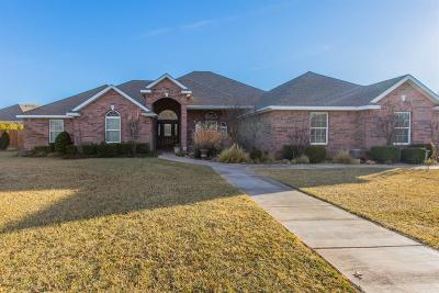 Single Family Home For Sale: 8303 County Road 6960