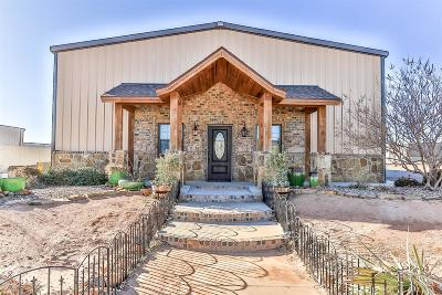 Lubbock Commercial For Sale: 5619 County Road 7410