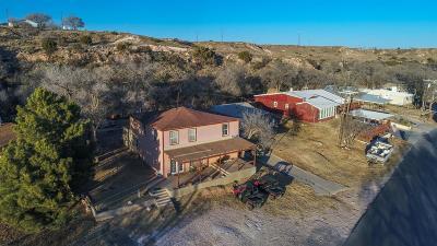 Single Family Home For Sale: 44 Comanche Drive