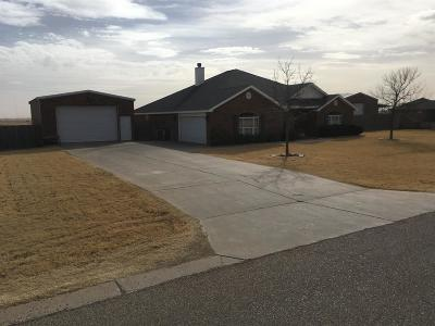 Lubbock Single Family Home For Sale: 5211 County Road 7360