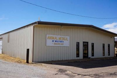 Wolfforth Commercial For Sale: 821 Us Highway 62/82