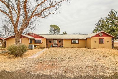 Bailey County, Lamb County Single Family Home For Sale: 2869 County Road 227