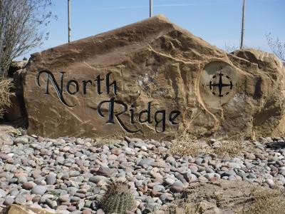 Residential Lots & Land For Sale: North Ridge Drive