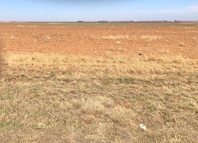 Lubbock TX Residential Lots & Land For Sale: $287,517