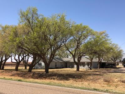 Bailey County, Lamb County Single Family Home For Sale: 2440 Farm Road 1072