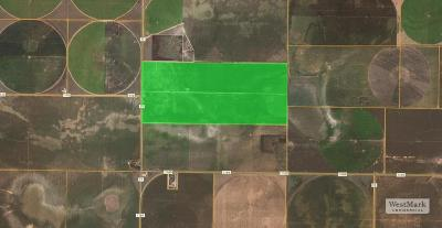 Farm & Ranch For Sale: Farm Road 77