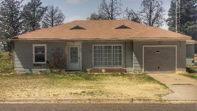 Bailey County, Lamb County Single Family Home For Sale: 600 S Ave H