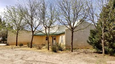 Lubbock Single Family Home For Sale: 6406 S County Road 1300