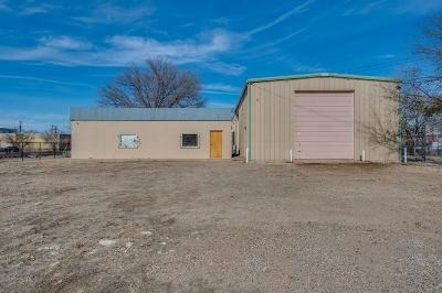 Lubbock Commercial For Sale: 719 Buddy Holly Avenue