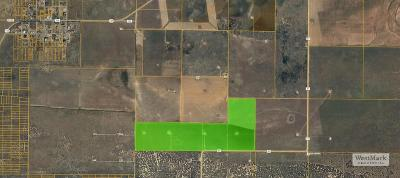 Cochran County, Crosby County, Dickens County, Garza County, Hale County, Hockley County, Lamb County, Lubbock County, Lynn County, Terry County Farm & Ranch For Sale: Farm Road 41
