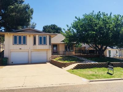 Ransom Canyon Single Family Home For Sale: 96 E Canyonview Drive