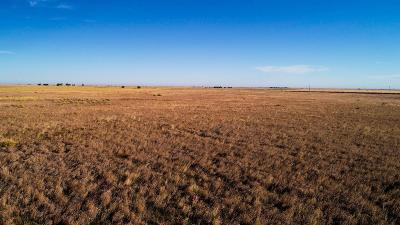 Muleshoe TX Farm & Ranch Under Contract: $265,500