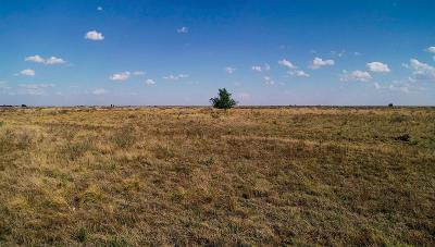 Muleshoe TX Farm & Ranch Under Contract: $128,325