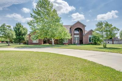 Single Family Home For Sale: 15613 County Road 1830