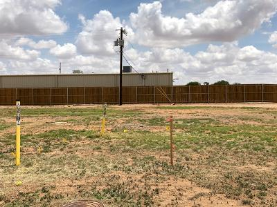 Lubbock County Residential Lots & Land For Sale: 1005 S Birch Avenue