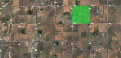 New Deal TX Farm & Ranch For Sale: $2,383,500