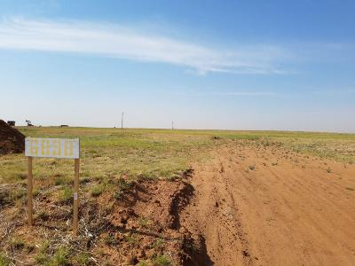 Shallowater Residential Lots & Land For Sale: 6898 Colorado Road
