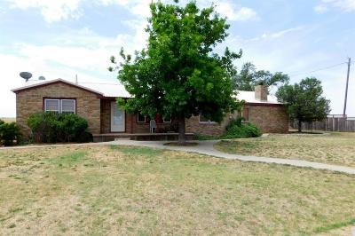 Bailey County, Lamb County Single Family Home For Sale: 732 Farm Road 3125