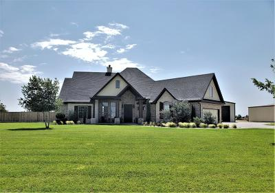 Single Family Home For Sale: 16507 County Road 2040