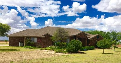 Lubbock Single Family Home For Sale: 7320 E County Road 6710