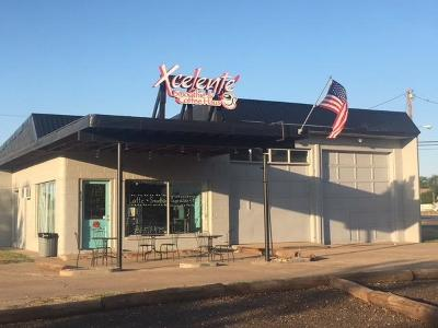 Bailey County, Lamb County Commercial For Sale: 630 Lfd Drive