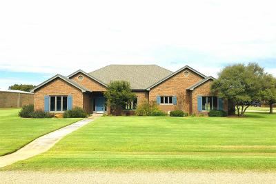 Lubbock Single Family Home For Sale: 7102 87th Street