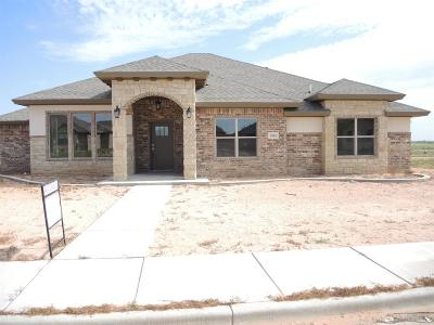 Single Family Home For Sale: 3916 127th