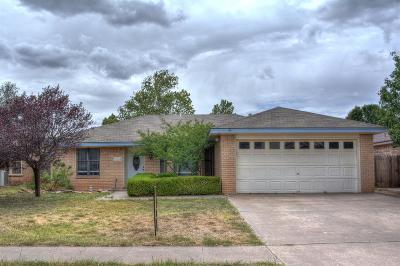 Lubbock Rental For Rent: 6924 Homestead Avenue