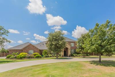 Single Family Home For Sale: 16006 County Road 1860