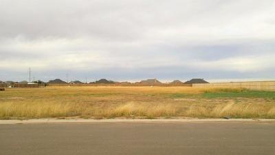 Lubbock County Residential Lots & Land For Sale: 6406 County Road 1480