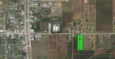 Lubbock Commercial Lots & Land For Sale: 204 E Farm Road 1585