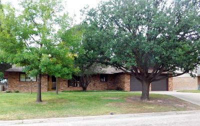 Bailey County, Lamb County Single Family Home For Sale: 706 W 20th