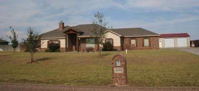 Lubbock Single Family Home For Sale: 16005 County Road 2140