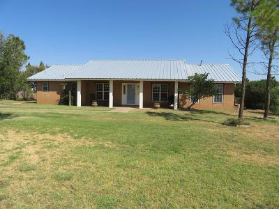 Lubbock County Single Family Home Under Contract: 10618 Farm Road 41