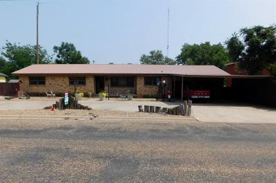 Bailey County, Lamb County Single Family Home For Sale: 1011 W 2nd