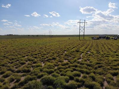 Wolfforth Residential Lots & Land For Sale: 3541 Killdee Road