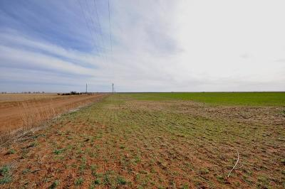 Cochran County, Crosby County, Dickens County, Garza County, Hale County, Hockley County, Lamb County, Lubbock County, Lynn County, Terry County Farm & Ranch Under Contract: 1150 County Road B