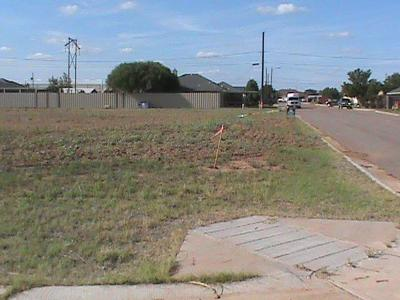 Lubbock County Residential Lots & Land For Sale: 804 13th Street