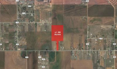 Lubbock Commercial Lots & Land For Sale: 2302 Farm Road 41