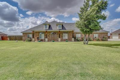 Lubbock Single Family Home For Sale: 16204 Private Road 1740