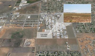 Lubbock Commercial Lots & Land For Sale: 8805 Wassau Avenue