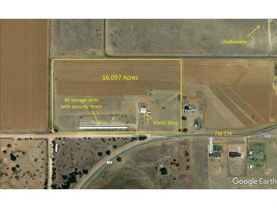 Shallowater  Commercial Under Contract: 8504 County Road 6000