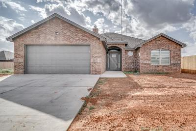 Lubbock Single Family Home For Sale: 10102 Ave W