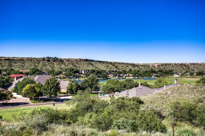 Ransom Canyon Garden Home For Sale: 5 Arapaho Road