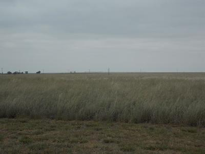 Lubbock Farm & Ranch For Sale: County Road 6400