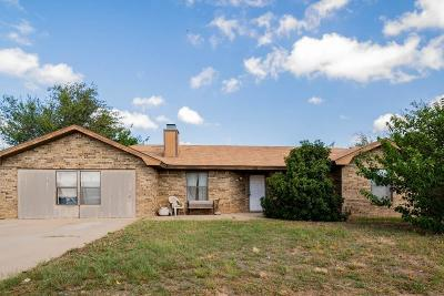 Lubbock Single Family Home For Sale: 1228 Xavier Street