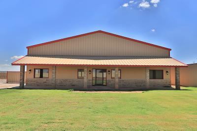 Lubbock Commercial For Sale: 804 E County Road 7300