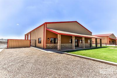 Lubbock Commercial For Sale: 808 E County Road 7300