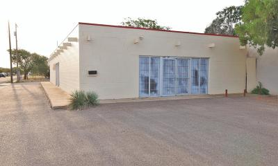Lubbock Commercial For Sale: 4001 Interstate 27