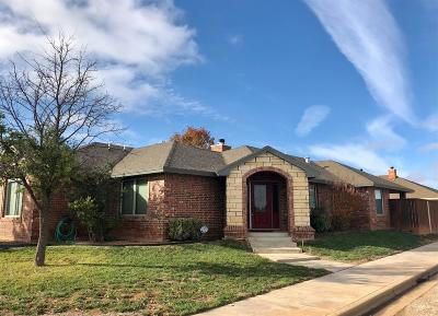 Lubbock Single Family Home For Sale: 10102 Elmwood Avenue